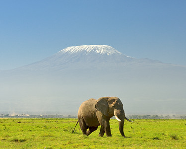 Travel -Africa