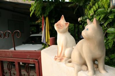 Thailand - Summer 2012