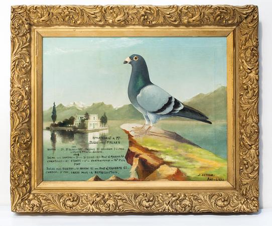 Tableau présentant un pigeon de concours posant sur un éperon rocheux, 1909.