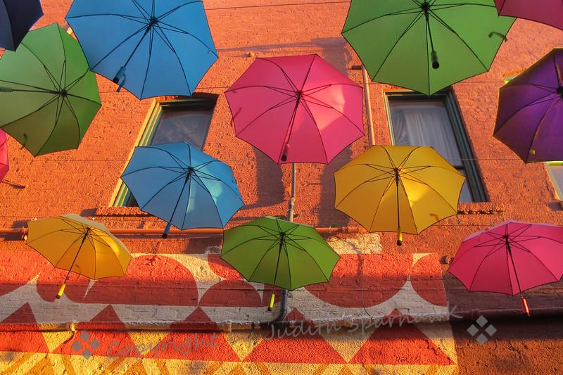 Umbrellas at Sunset - Judith Sparhawk