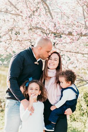 Family Love - Susana Carapichoso