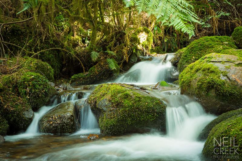 creek-141025-114.jpg