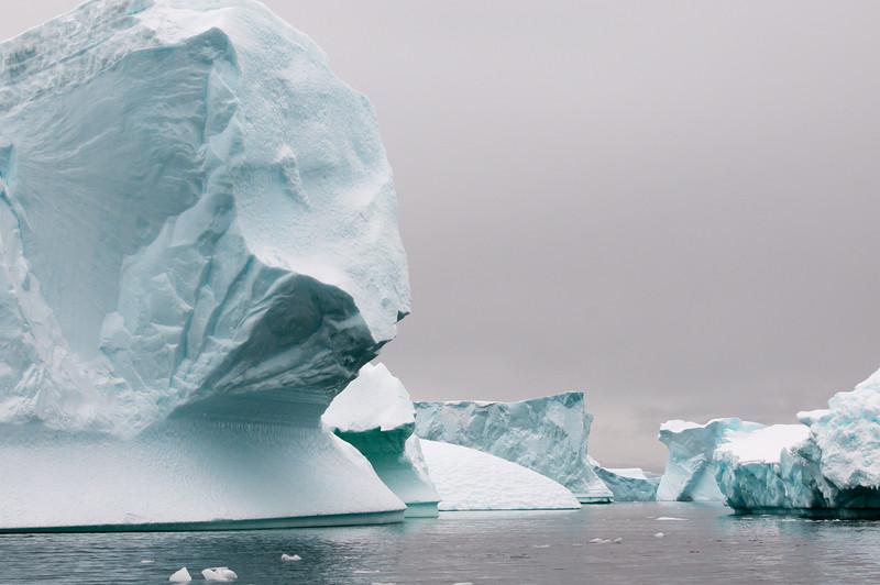 Antarctica 2015 (35 of 99).jpg