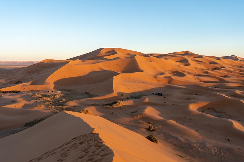 Sahara Desert dunes at sunset