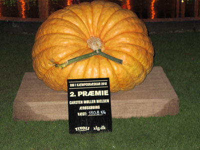 20121016 Halloween i Tivoli - Græskar
