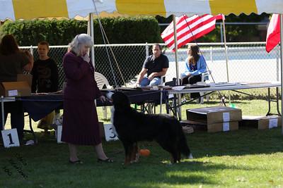 Veteran 9-11yr Dog BMDCW 2010