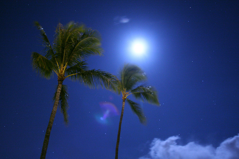 Hawaii_40D 358_Blue (1)