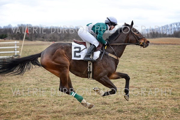 Blue Ridge Hunt Point To Point, Woodley Farm  ~ March 12, 2016