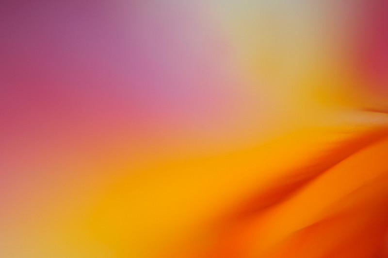 colour-theme-I.jpg