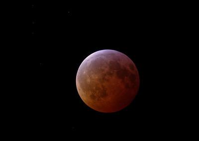 2019 Blood Moon