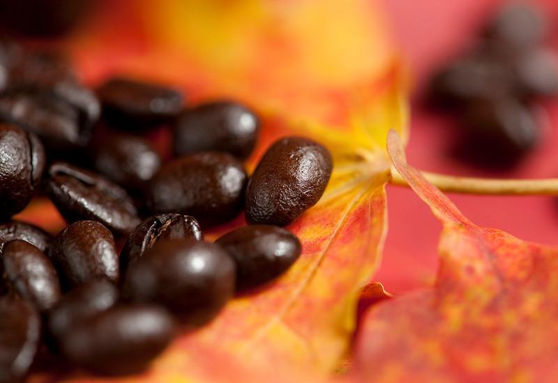 Fall-leaves-2.jpg