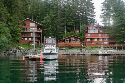 Elfin Cove 2016
