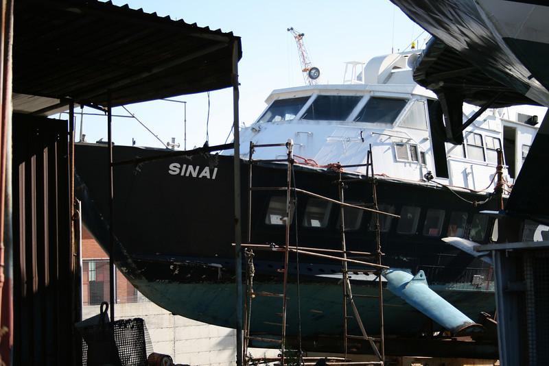 Sinai 2008.01.26 Napoli 1x.JPG