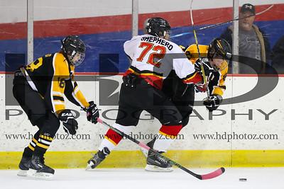 Sabres Rec White vs Bruins, Bantam 14U 1-22-17
