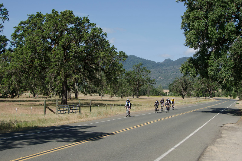 Pope Valley Road (heading to Butts Canyon)