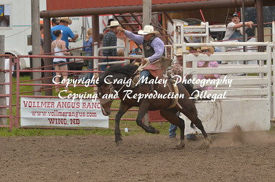 PERF SADDLE BRONC 06-21-15