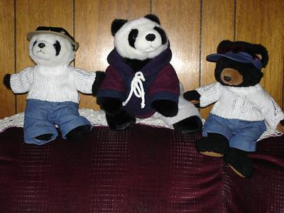 3-1-06  Bamboo the Panda Bear