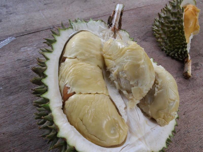 Star Fruit inside.jpg