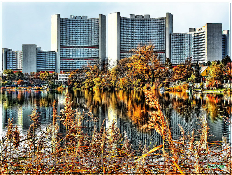 Vienna International Autumn
