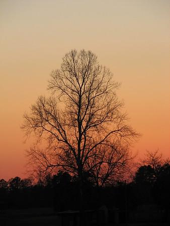 Sunset 20071227