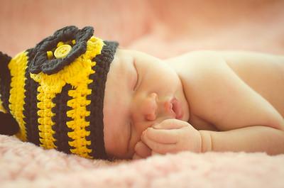 Baby Pippa