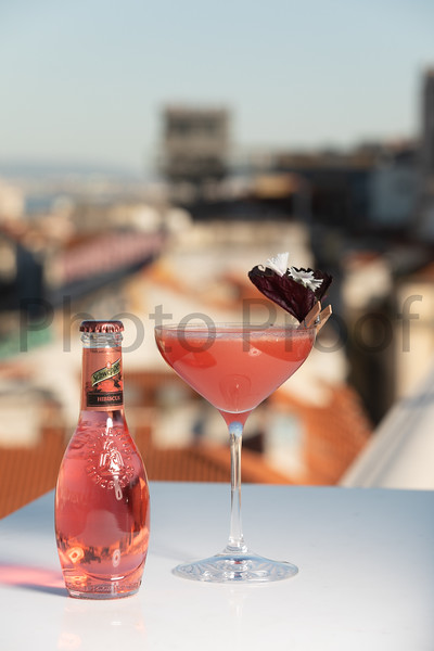 BIRDSONG Schweppes Cocktails 211.jpg