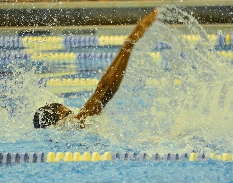 Swim Meet 11-09-13 (154 of 1544).jpg