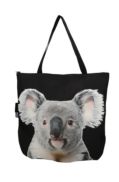 koala 123.jpg