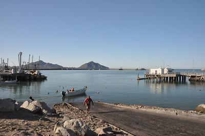 Harbor Area & Giant Cactus