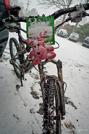 Calverton Beginner Ride December 2010