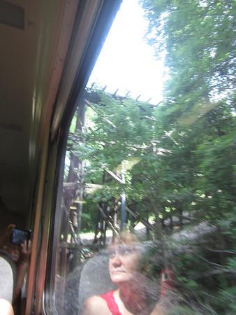 Hiawassee Loop Train Trip