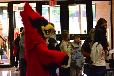 Fall Cardinal for a Day