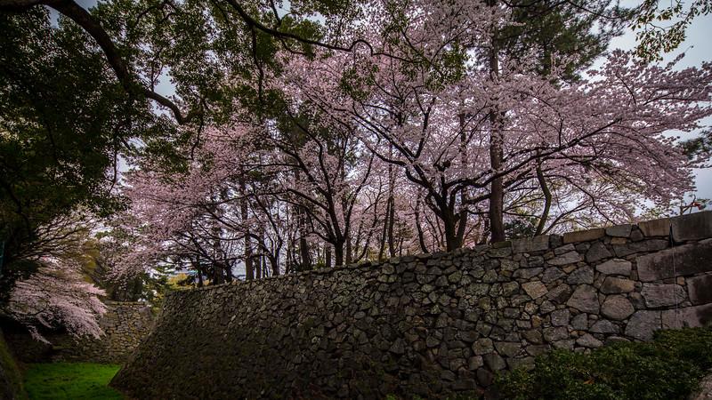 Nagoya 310313 3 .jpg