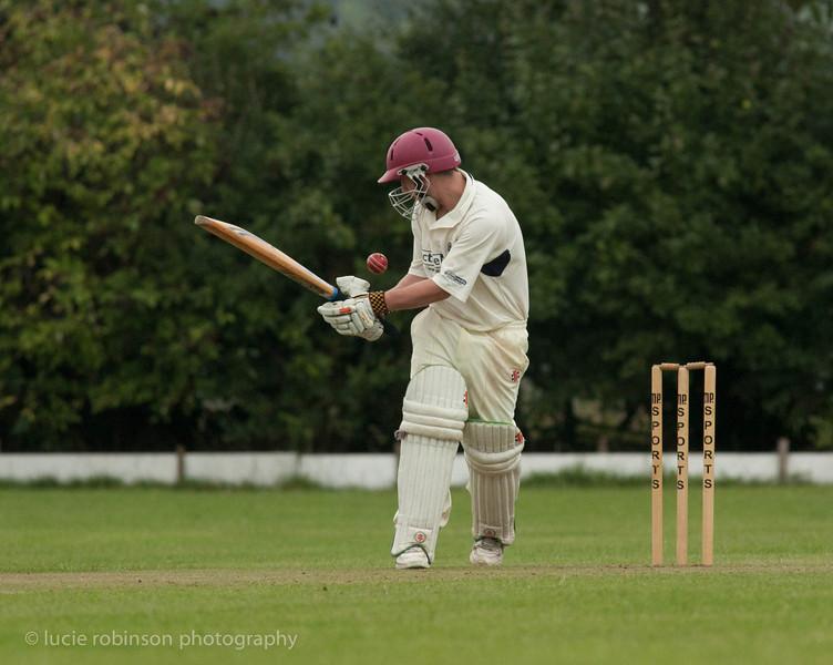 110820 - cricket - 069-2.jpg