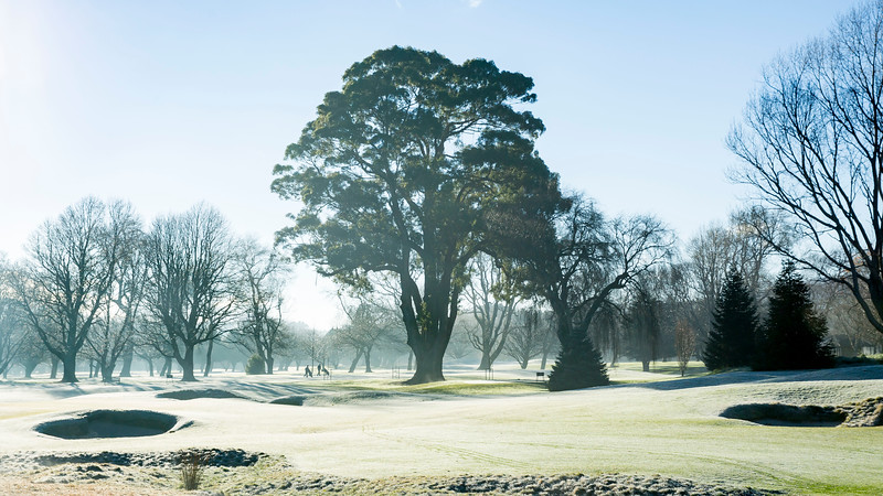 Images captured in the early morning fog on a frosty morning at Royal Wellington Golf Club, Heretaunga, Wellington, New Zealand on Sunday, 16 July 2017. Copyright: John Mathews 2017.  www.megasportmedia.co.nz