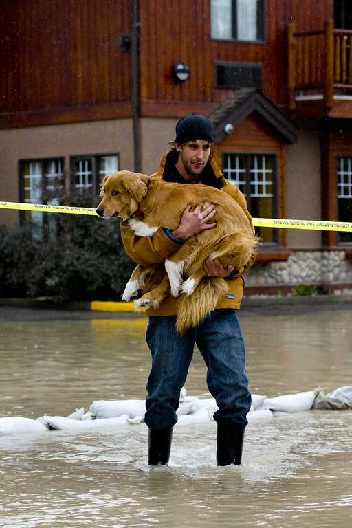 . Mike Sommers carries his dog Kratos through the floodwater outside his apartment June 21, 2013 in Canmore, Alberta, Canada.  Widespread flooding caused by torrential rains washed out bridges and roads prompting the evacuation of thousands.  (Photo by John Gibson/Getty Images)