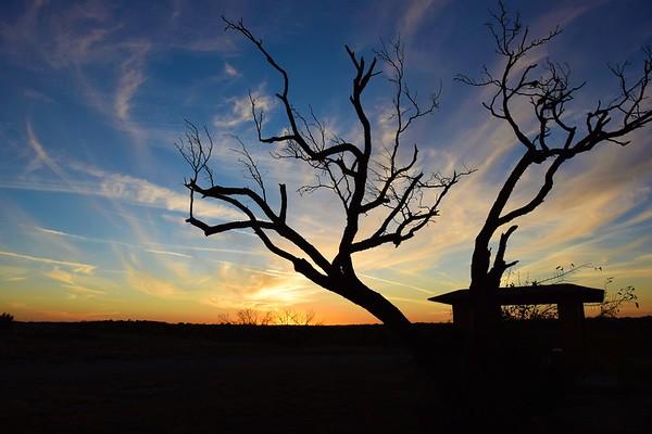 San Angelo State Park TX