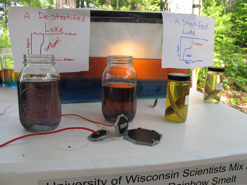 Jars of warm and cool water have food coloring to symbolize the difference in temperature at different depths of the lake. Using miniature GELI's, guests could mix their own lake!
