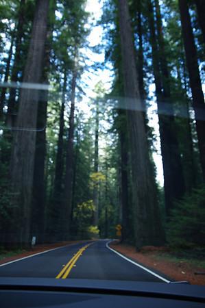 12-14 November 2011 - California