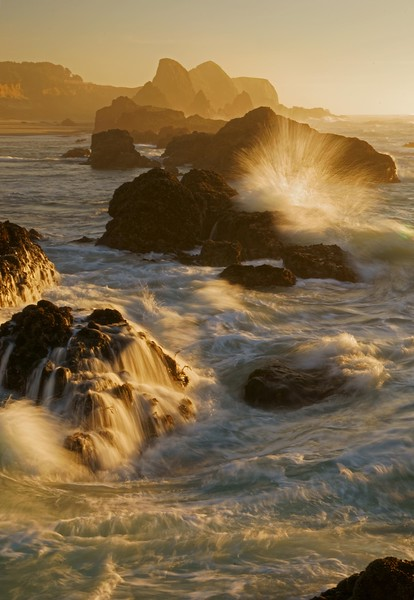 Seal Rock splash vert 991 raw3 cropd sf.jpg