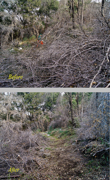 20120114013 - Gabrielino Near Switzers, before and after.jpg