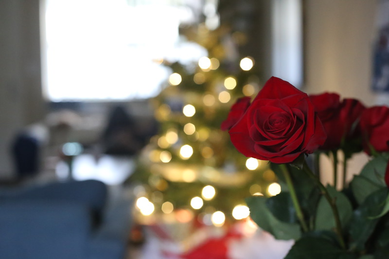 2019-12-22_ChristmasDecor-4430.JPG