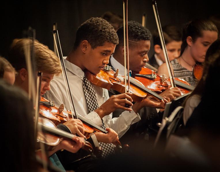 Orchestra-54.jpg