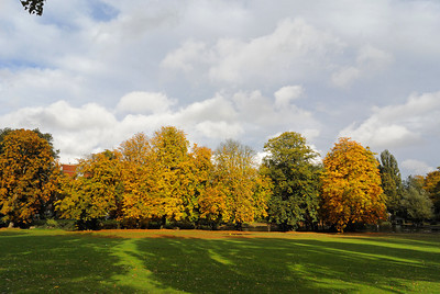 Autumn Park Colour