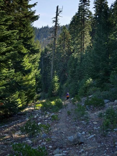 Mount Elijah Oregon Caves National Monument Sturgis Fork Oregon