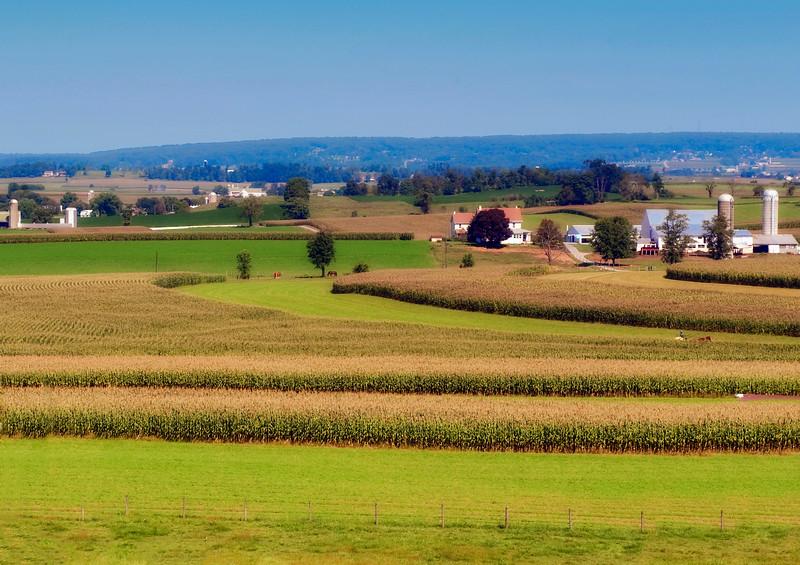 Amish Country-1.jpg