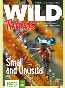 KCC_WildThings_142_Autumn2019_cover-S.jpg