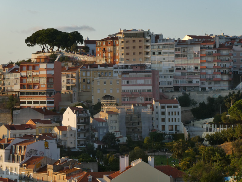 Lisbon August 19 -83.jpg