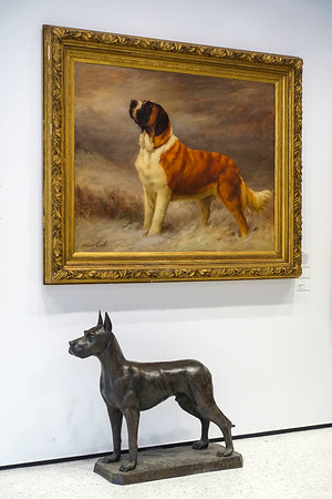 Dog Museum (2019)