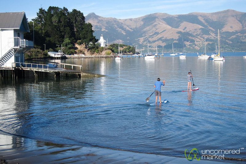 Paddle Boarding in Akaroa - New Zealand
